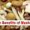 Health Benefits of Mushrooms, weight loss, pregnancy, onions