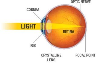 eye-diagram-sharper-vision-centers-torrance-ca
