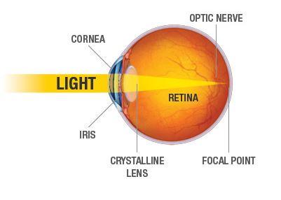 eye-diagram-sharper-vision-centers-torrance-ca